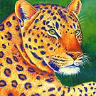 Colorful Leopard Big Cats Portrait by Rebecca Wang