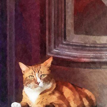Cats - Orange Tabby in Doorway by SudaP0408