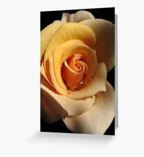 Rustling Rose Greeting Card