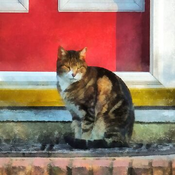 Pets - Tabby Cat by Red Door by SudaP0408