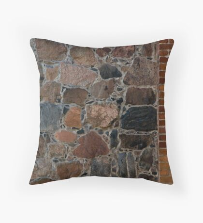Older and Newer Throw Pillow