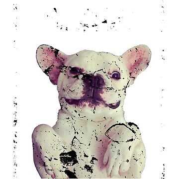 Smile Funny French Bulldog  by IKOK
