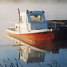 Moored in the Mist by Mike Oxley