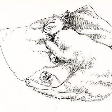 Chang snoozing by rozmcq