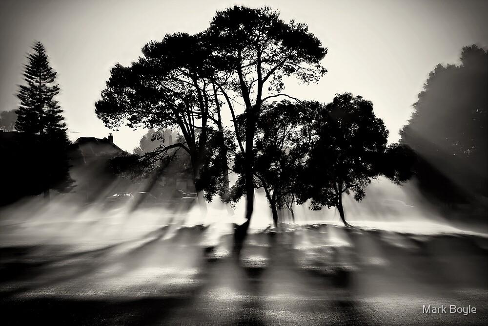 Misty Morning, Lake Jualbup #1 by Mark Boyle