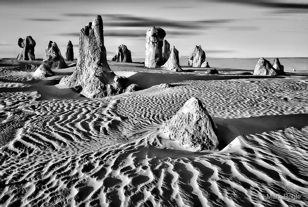 Pinnacles Desert, Western Australia by Mark Boyle