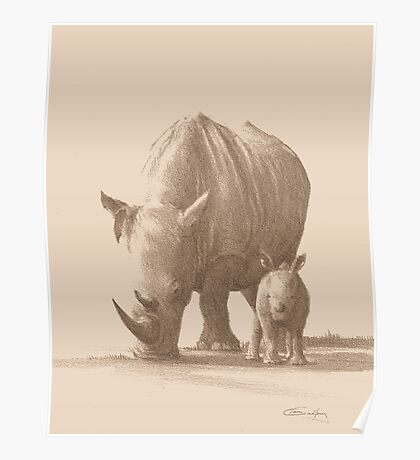 Mother and Baby White Rhino Poster