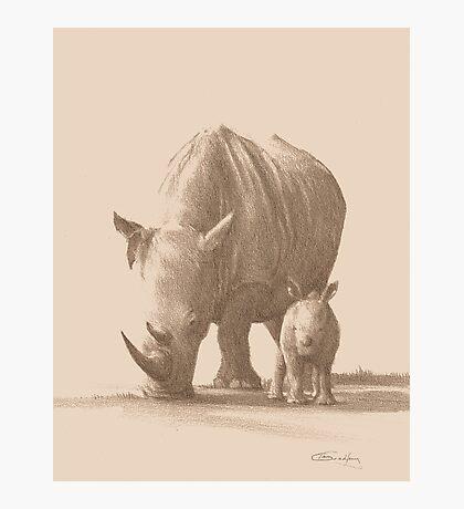 Mother and Baby White Rhino Photographic Print