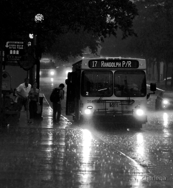 Unexpected Rain!! by charlena