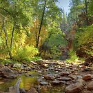 Autumn Stream In Oak Creek Canyon Sedona by K D Graves Photography