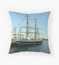 Prince William at dockside Throw Pillow