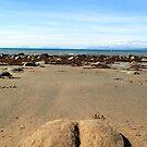 Llwyngwril beach bum by gruntpig