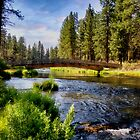 Spring Creek - Oregon by Kathy Weaver