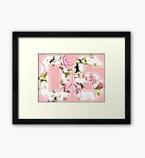 6th b-day gift roses number 06 6 birthday pink Framed Print