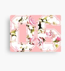 6th b-day gift roses number 06 6 birthday pink Canvas Print