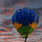 Balloon in Sunset by Colleen Drew