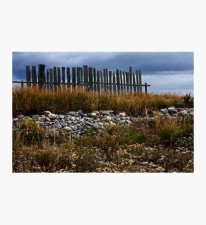 Mormon Row, Fence Remnant Photographic Print