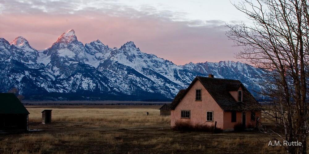 Peach House, Mormon Row, Tetons by A.M. Ruttle