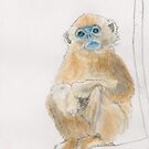 Good News from the Golden Snub Nosed Monkey by Joel Borgerson