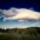 elephant cloud by iaintsmart