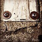 Faccia di placca sull'asfalto by SilviaDallaDea