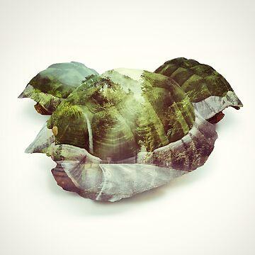 Green Shells - Kart Art by andywynn