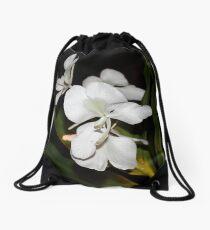Butterfly Ginger Drawstring Bag