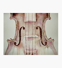 G D A E notes on a violin © 2009 patricia vannucci  Photographic Print