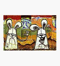 Graffiti Bunnies Photographic Print