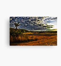 Newport Conservation Park - Swamp Canvas Print