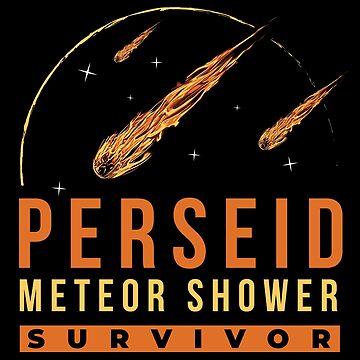 Perseid Meteor Shower Survivor by radvas