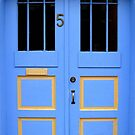 Door Number Five by Brian Gaynor