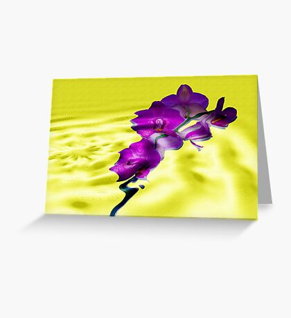 Reflections of Moth Orchid Greeting Card