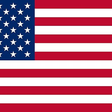 United States Flag by Brogy2323