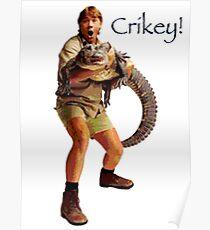 Crikey! Poster