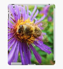 Fat Bumblebee Radiant Purple Aster Painting iPad Case/Skin