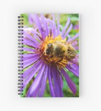 Fat Bumblebee Radiant Purple Aster Painting Spiral Notebook