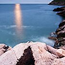 Otter Cliffs Moonrise by Andrew Stockwell