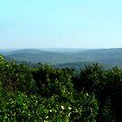 The Litchfeild Hills by mooner1