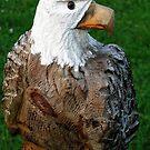 Eagle Eyes by mooner1