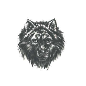 Wolf face by DigitalStudio