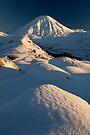 Mt Ngauruhoe Sunrise. by Michael Treloar