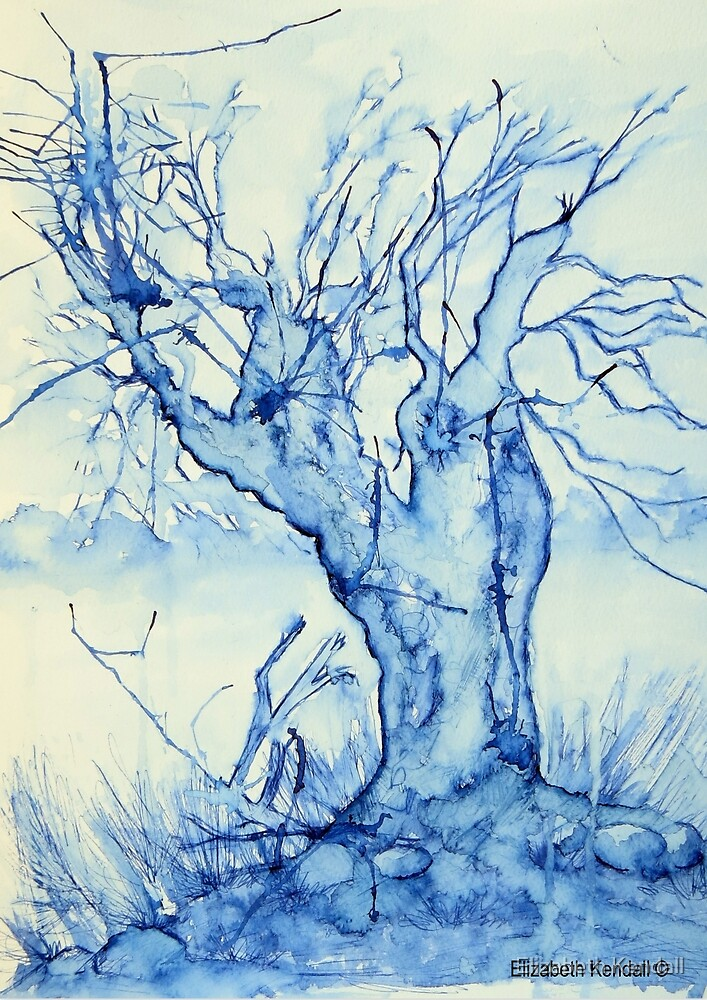 A tree in the veld by Elizabeth Kendall