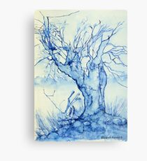 A tree in the veld Metal Print