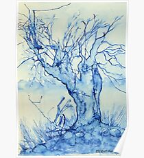 A tree in the veld Poster