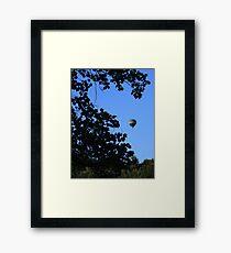 Frame of Mind..,. Framed Print