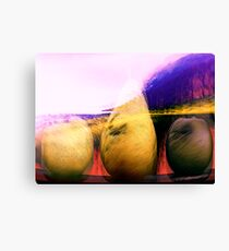 still life.... landscape 3 Canvas Print