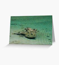 Sunken Greeting Card