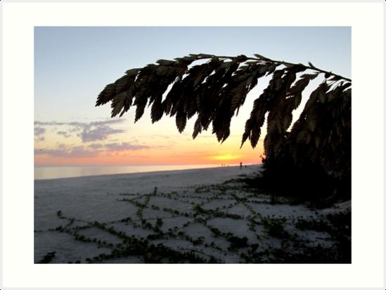 Beach Life by Rosie Brown
