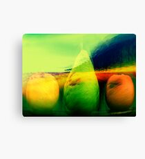 still life......landscape 4 Canvas Print